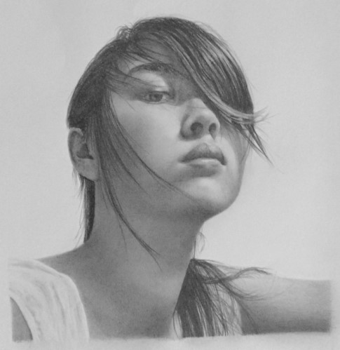 Learn how to create a realistic pencil drawing.